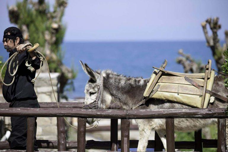 Sustainability at Creta Maris Beach Resort