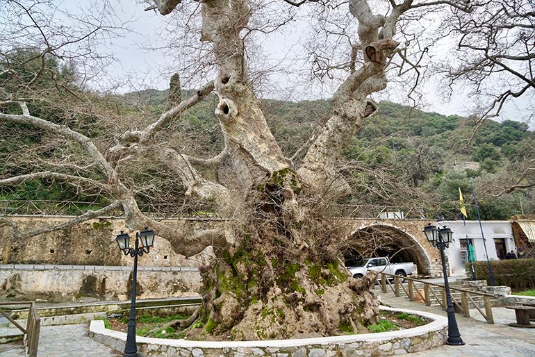 Krasi, a mountain village to explore